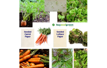 New to the Store – Seeded Vegie Papers – Carrot and Bronze Mignonette Lettuce