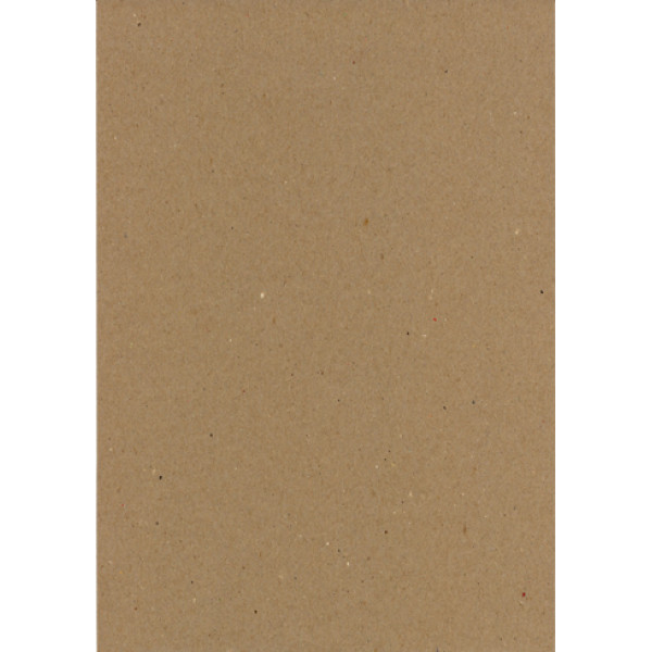 Eco Brown A4 230gsm Recycled Duplex (pack of 100 sheets)