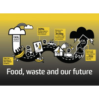 Food Waste: learn from a banana