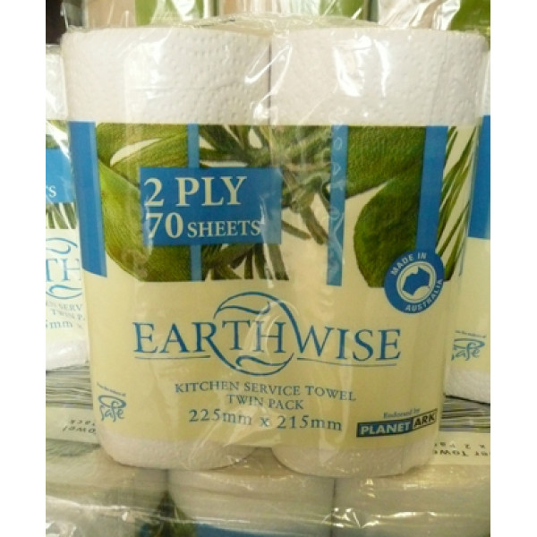 Earthwise Kitchen Towels 2ply x 120 sheets  2pk