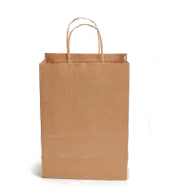 Recycled Brown Paper Large Carry Bag with twisted paper handles (Pack of 50)