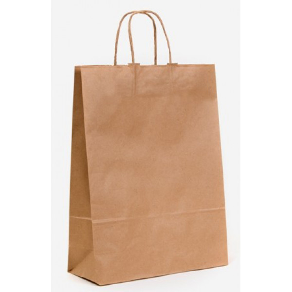 Recycled brown paper large carry bag with twisted paper for Brown paper craft bags