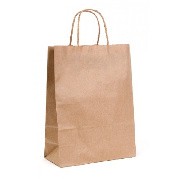Recycled Brown Paper Medium Carry Bag with twisted...