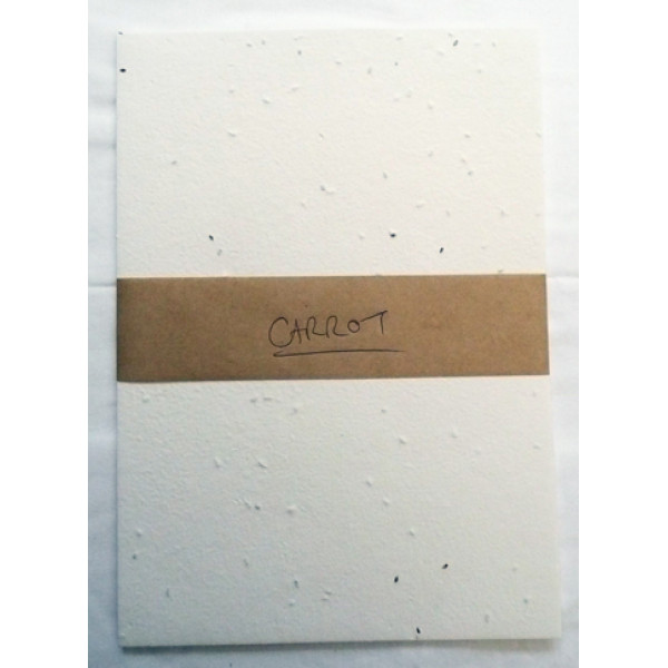Seeded Vegie Paper A5 (Carrot) (Pack of 20 sheets)