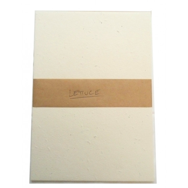 Seeded Vegie Paper A5 (Lettuce) (Pack of 20 sheets...